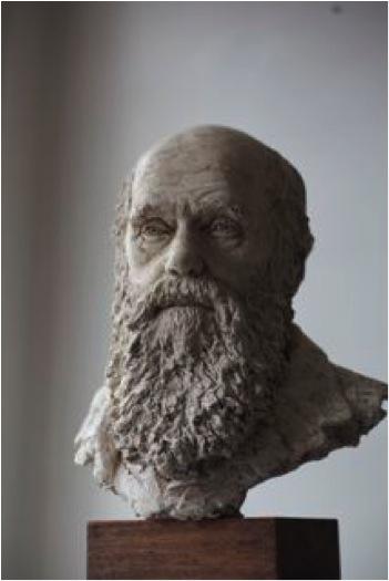 Suzie Zamit Charles Darwin