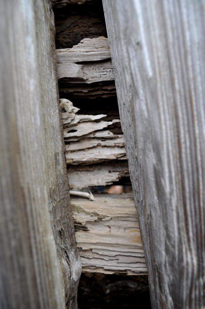 7. Erosion image