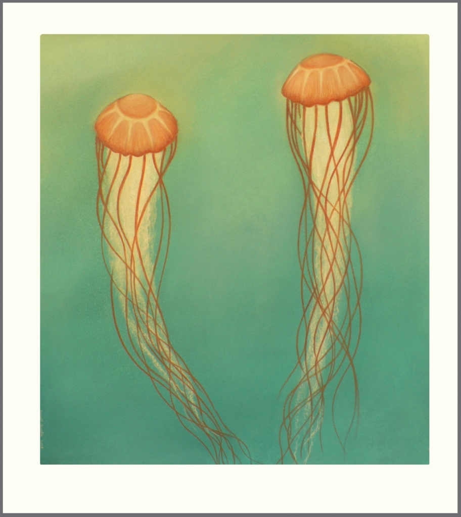 2-jellyfish-drawing1-912x1024