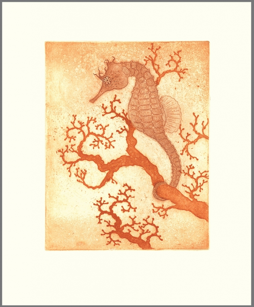 seahorse-and-coral1-847x1024