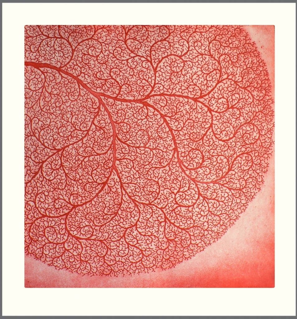 site-etching-lace-coral-955x1024