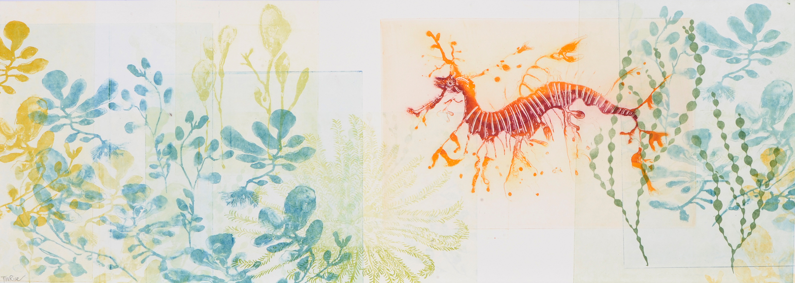 OCEANUS Red and Orange Weedy Sea Dragon Trudy Rice 2015