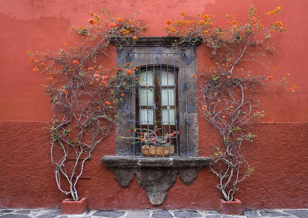 Mexican Window