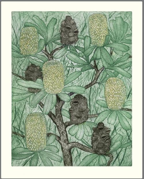 Banksia-old-man-500x621
