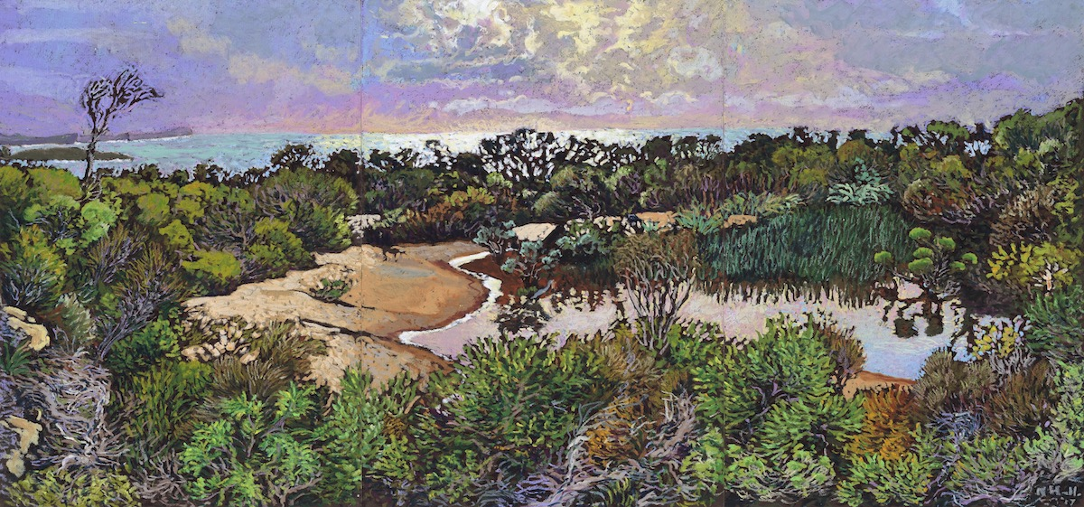 Elevated Wetland Overlooking the Northern Beaches