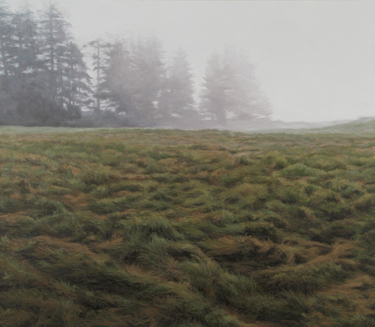 Field and Fog 40x46 in.